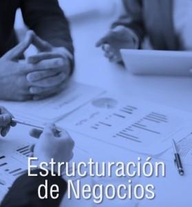 Estructuración de Negocios